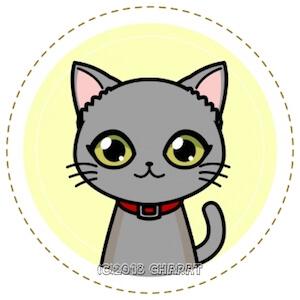 猫(ロシアンブルー)のエルちゃんの画像